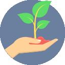 icone_plante